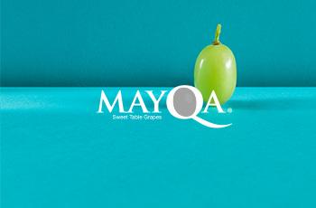 Mayqa